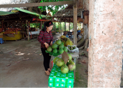 Market Teaching Development in Southern Vietnam