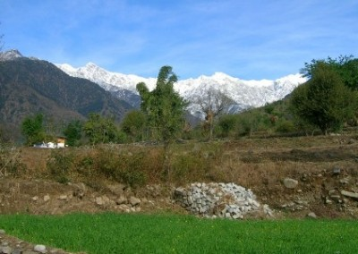 Palampur mountains Family Volunteering Renovation and Community Work in India