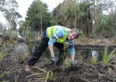Volunteer Environmental Conservation in South Island in New Zealand