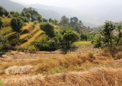Farming levels Empower Women on Sustainable Agriculture Initiative in Nepal