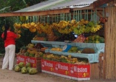 Fruit stall Improve Nutritional Standards in the Philippines