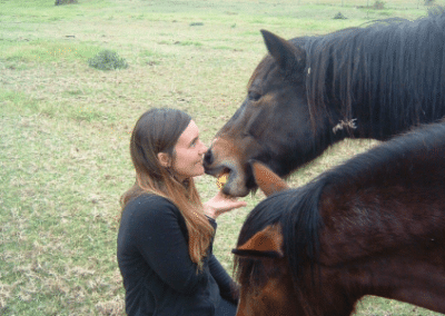 Volunteer with horses veterinarian internship South Africa