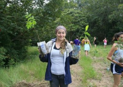 Planting trees from volunteer in Brazil